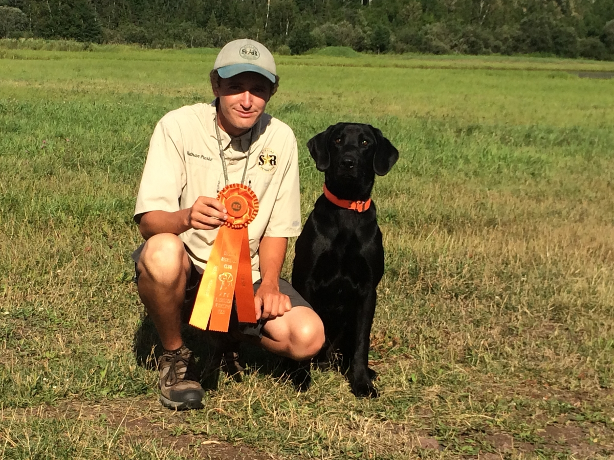AKC Hunting Dogs